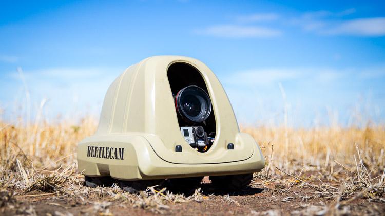 BeetleCam in Africa